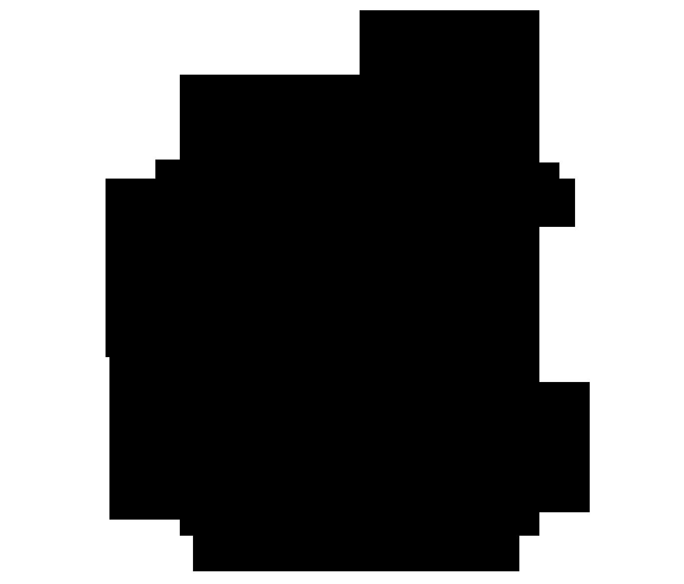 iPhone_logo - Copy